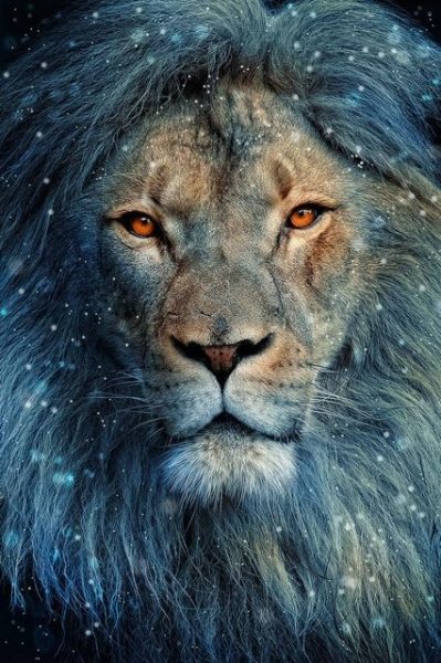 Jupiter Transits Leo: How Will You Plan the Year Ahead?