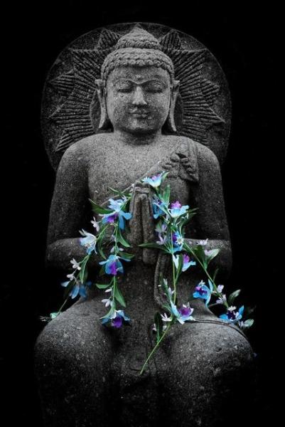 Ask a Zen Teacher: What's the Difference Between Zen & Tibetan Buddhism?