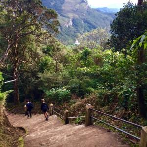 The endless staircase. Adams Peak, Sri Lanka, December 2015