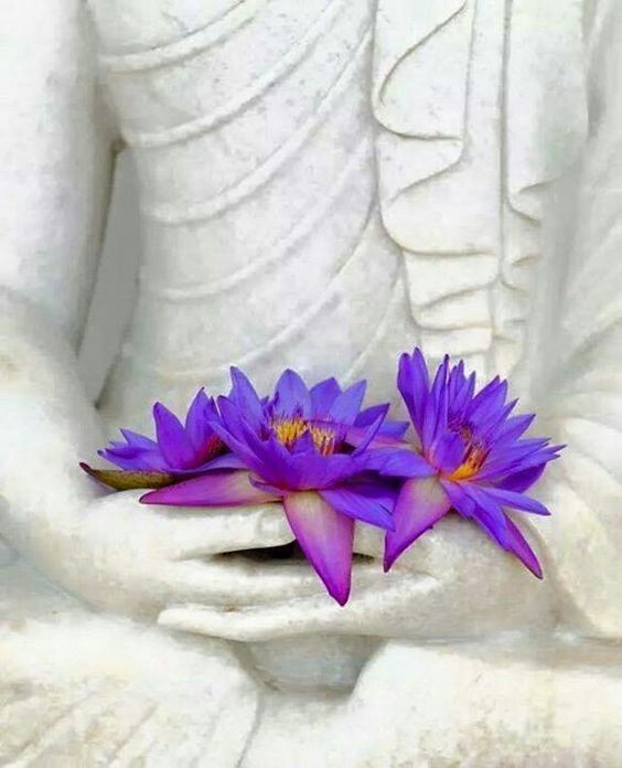 Buddhism in the Springtime.
