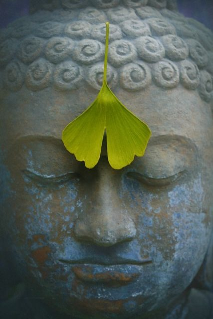 Shantideva on Mindfulness {The Eightfold Path}