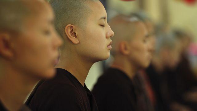 What is Insight (Vipassana) Meditation?
