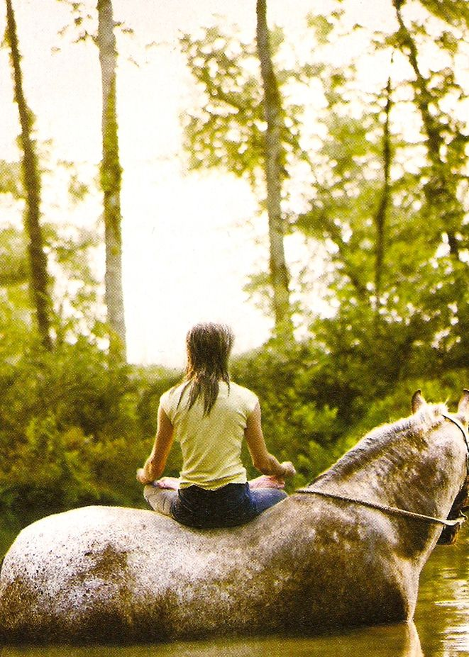 Getting Back on the Horse: My First Experience with Meditation