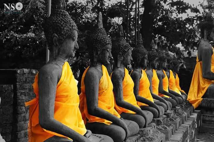 Dwell In Mindfulness and Awaken.