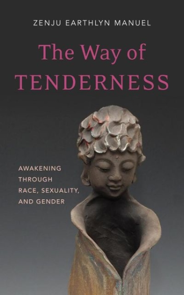 The Way of Tenderness—Awakening Through Race, Sexuality & Gender. {Book Review}
