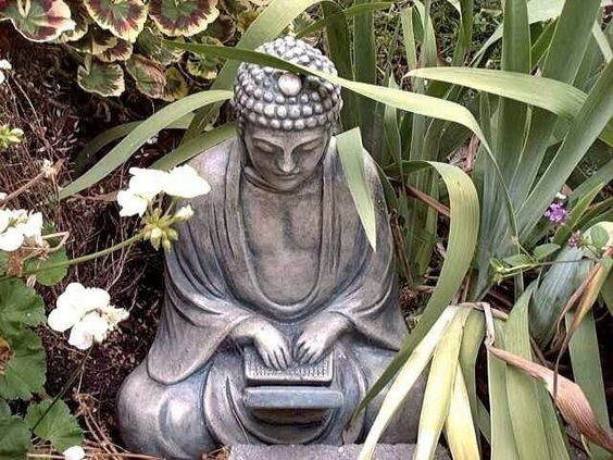 A Buddhist View of Dealing with Online Bullies & Trolls