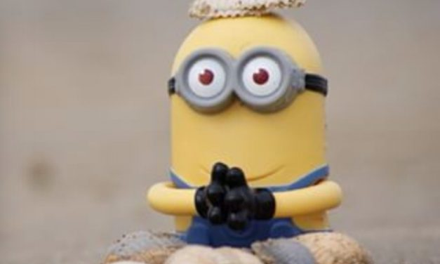 The Zen of Despicable Me (and How to be Happy)