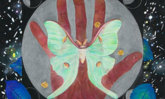 A Message from a Luna Moth