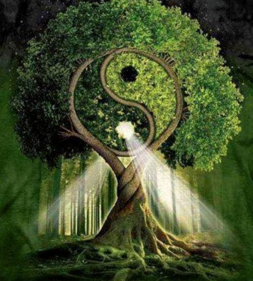 An Eye for an Eye: Right Thought from a Celtic Perspective {The Eightfold Path}