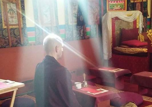 The Faces of Meditation: Dawai Gocha