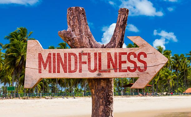 Wandering Through the Moments with Mindfulness