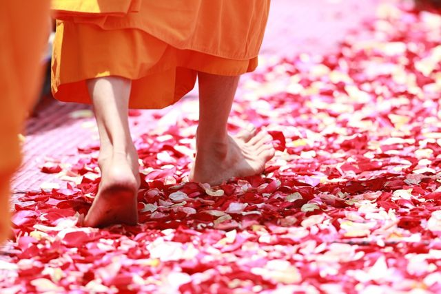 Have You Tried Walking Meditation? Here is a Basic Guide:
