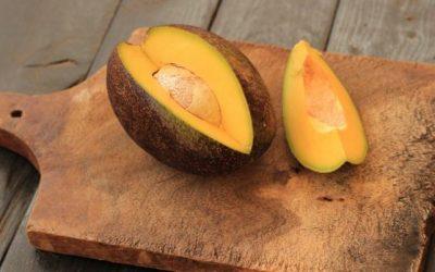 The Last Avocado