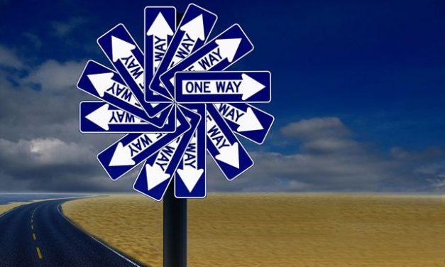 Dharma 101: A Beginner on the Path