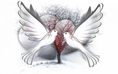 In the Deep Midwinter: The Warmth of Compassion {Part 2}