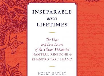Inseparable Across Lifetimes {Book Review}