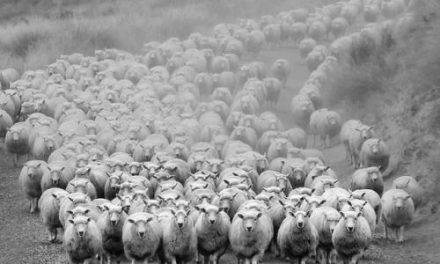 Flocks are Done Being Abused: The Power of the Veil of Secrecy in Religion