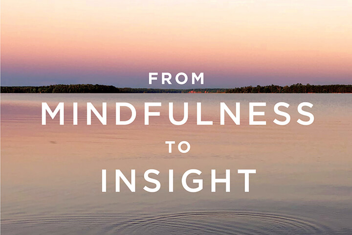 From Mindfulness to Insight: Finding Clarity {Book Review, Part 1}