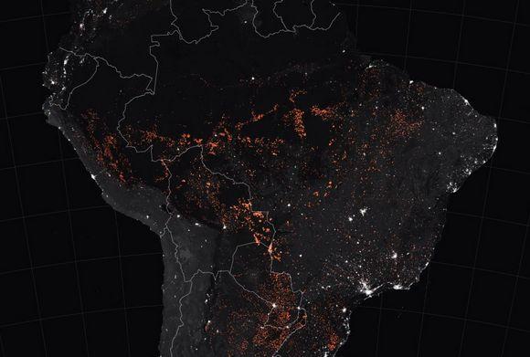 The Amazon Rainforest is Burning