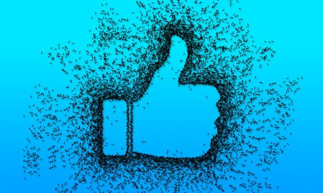 Right Facebook: How to End Suffering One Post at a Time