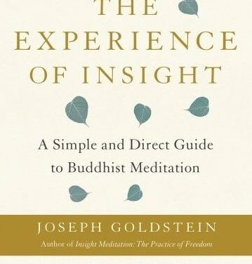 The Experience of Insight: A Simple and Direct Guide to Buddhist Meditation {Book Review}