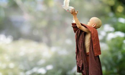"A Buddhist ""How-to"" on Forgiveness"